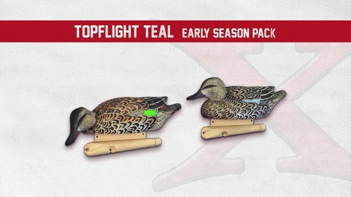Avian-X Top Flight Teal Early Season Duck Decoys 6 Pack - image 5 from the video