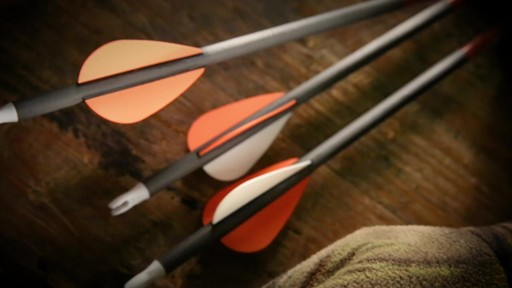 Victory Trophy Hunter 350 Arrows 12 Pack - image 10 from the video