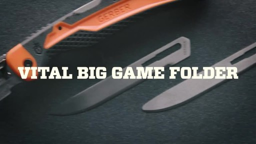 VITAL BIG GAME FOLDER - image 9 from the video
