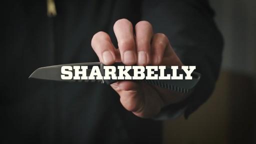 Gerber Sharkbelly Fine Edge Folding Knife - image 1 from the video