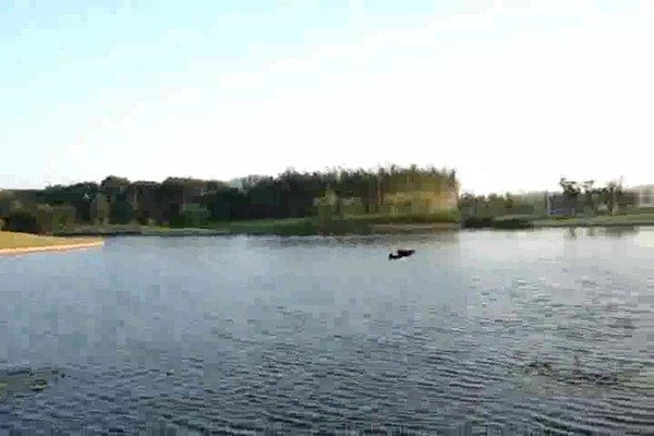 Radio - controlled Hydro - fly Boat / Plane - image 4 from the video