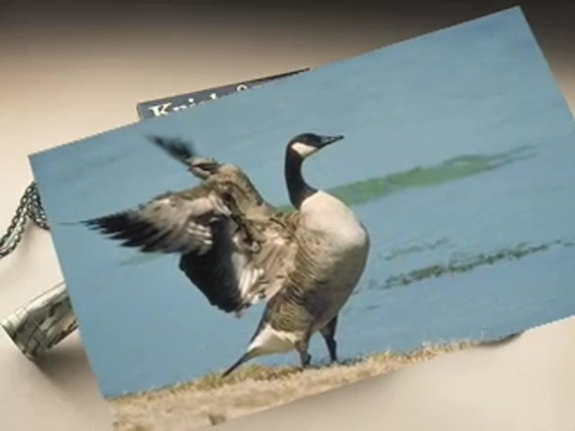 Knight and Hale® Goose Calling Kit - image 4 from the video