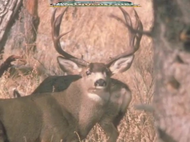 Knight & Hale® Magnum Grunter Deer Call  - image 10 from the video