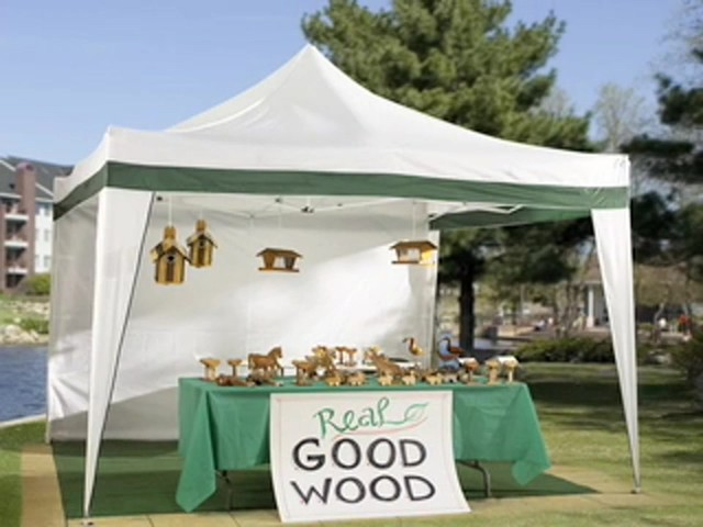 Pop - up 10x10' Vendor Gazebo - image 10 from the video