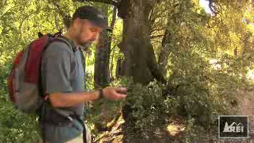 Introduction to Geocaching Video - image 1 from the video