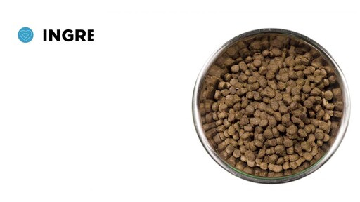 Merrick Grain Free Dry Dog Food - image 7 from the video