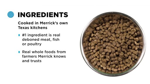 Merrick Grain Free Dry Dog Food - image 8 from the video