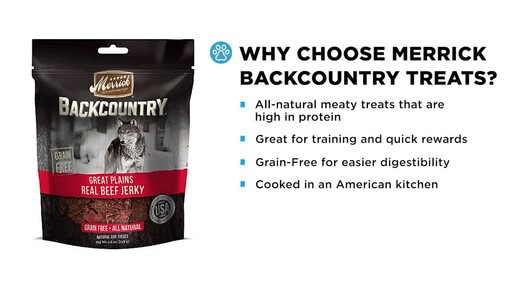Merrick Backcountry Dog Treats - image 4 from the video