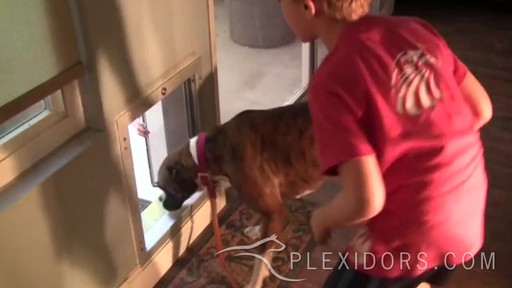 PlexiDor Door Pet Door  - image 3 from the video