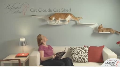 Cloud Shelf by The Refined Feline - image 2 from the video