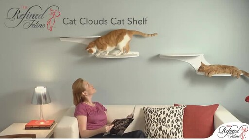 Cloud Shelf by The Refined Feline - image 3 from the video