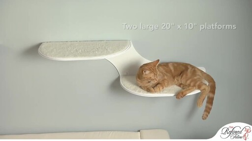 Cloud Shelf by The Refined Feline - image 6 from the video