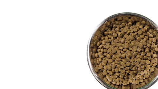 Whole Earth Farms Dry Dog Food - image 7 from the video
