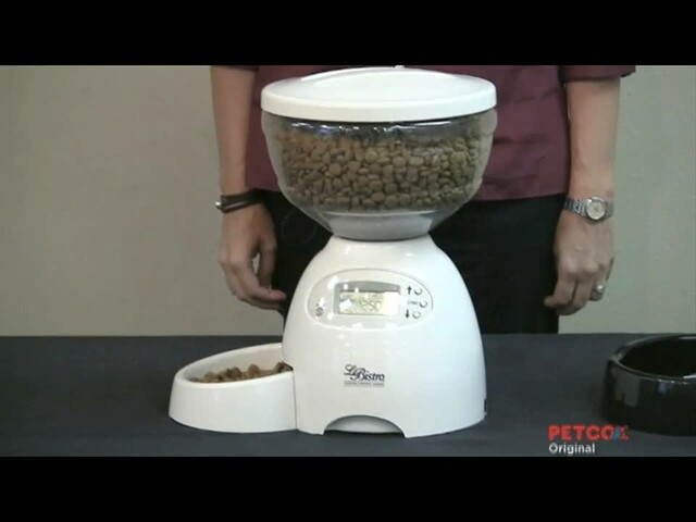 Petmate Le Bistro Portion Control Automatic Feeder - image 4 from the video