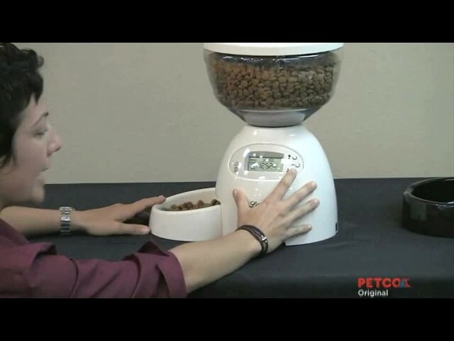 How-To Program the Petmate Portion Control Feeder - image 4 from the video