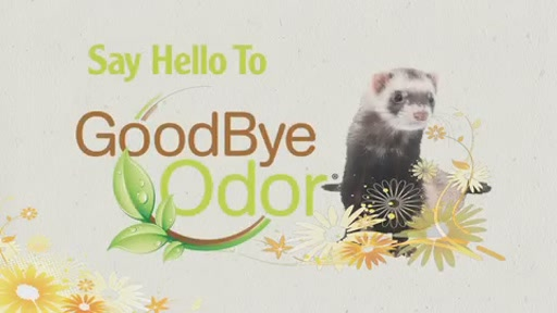 Goodbye Odor by Marshall Pets - image 1 from the video