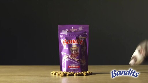 Bandits Ferret Treats  - image 8 from the video