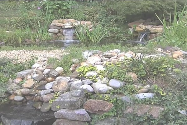 How-to Choose a Pump for Your Pond - image 2 from the video