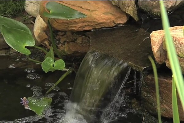 How-to Choose a Pump for Your Pond - image 4 from the video