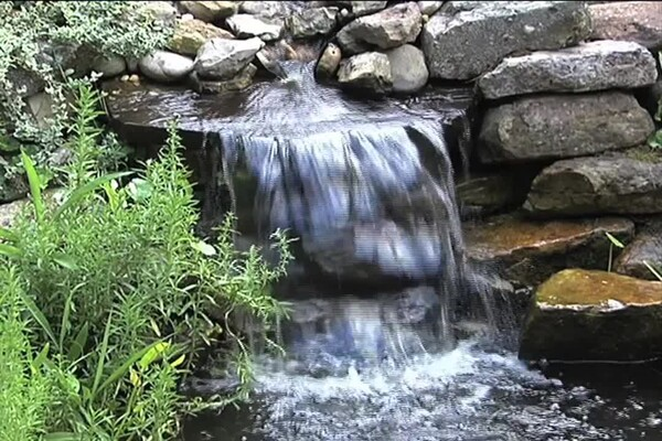 How-to Choose a Pump for Your Pond - image 7 from the video