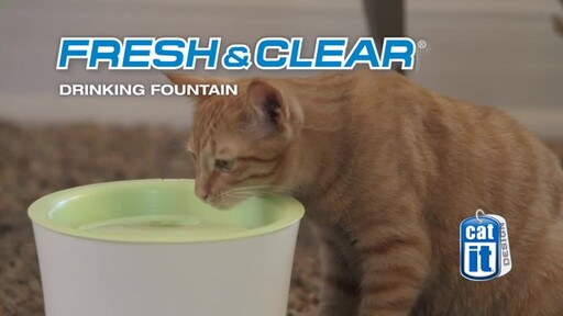 CatIt Fresh and Clear Fountain - image 2 from the video