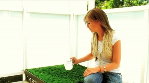 The Pet Loo Indoor Yard Training System - image 7 from the video