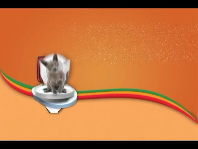 Litter Kwitter Toilet Training System - image 1 from the video