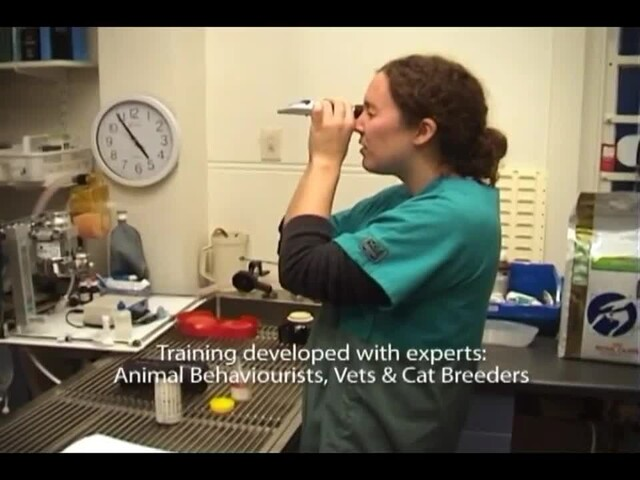 Litter Kwitter Toilet Training System - image 2 from the video