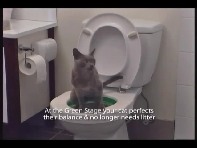 Litter Kwitter Toilet Training System - image 5 from the video