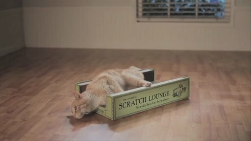 The Original Scratch Lounge - image 7 from the video