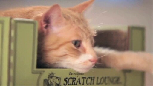 The Original Scratch Lounge - image 9 from the video