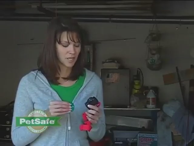 How-to Setup the PetSafe Wireless Fence - image 9 from the video
