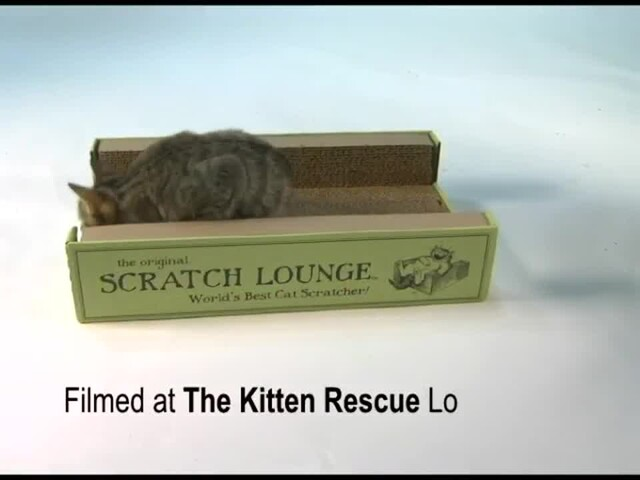Scratch Lounge  - image 1 from the video