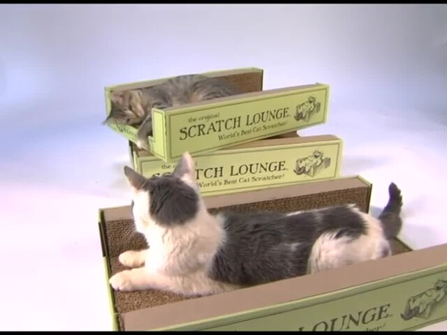 Scratch Lounge  - image 7 from the video