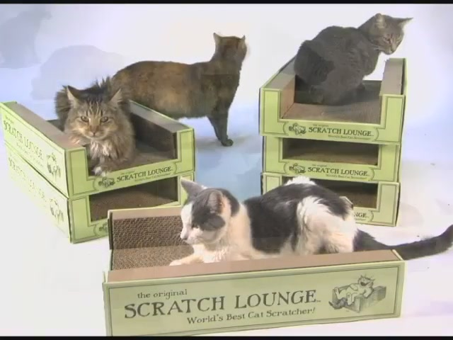Scratch Lounge  - image 8 from the video