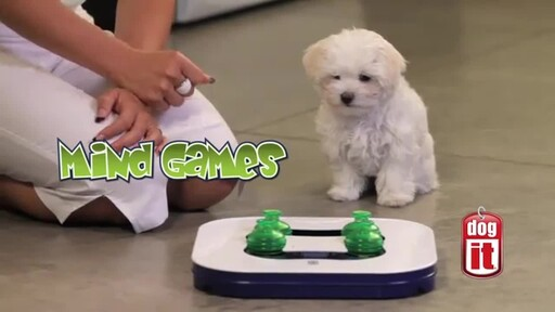 Dogit Mind Games Interactive Game - image 1 from the video