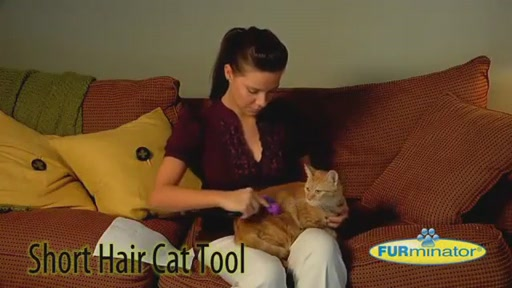 FURminator Short Hair Cat Grooming Tool - image 2 from the video