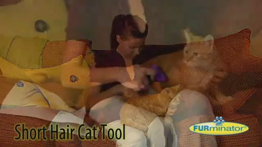 FURminator Short Hair Cat Grooming Tool - image 3 from the video