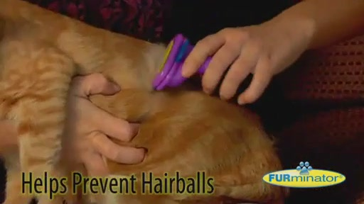FURminator Short Hair Cat Grooming Tool - image 5 from the video