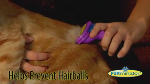FURminator Short Hair Cat Grooming Tool - image 6 from the video