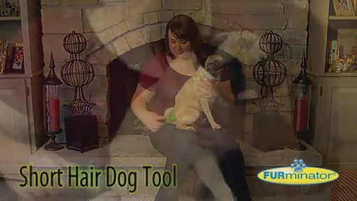 FURminator Short Hair Dog - image 3 from the video
