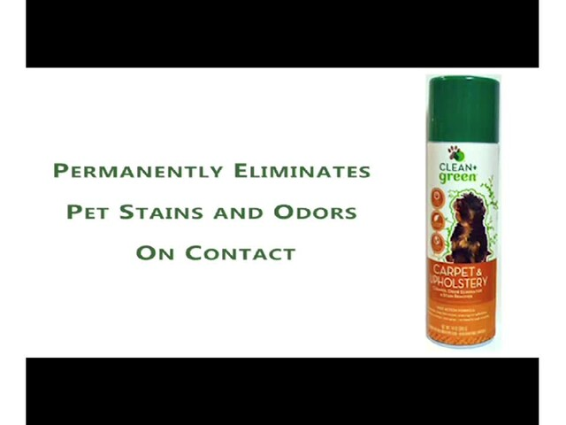 CLEAN   green Carpet & Upholstery Cleaner - image 4 from the video