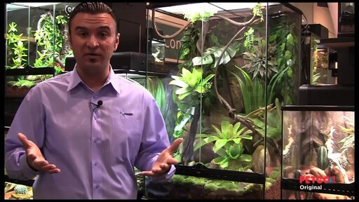 How-to Set Up a Rainforest Terrarium - image 5 from the video