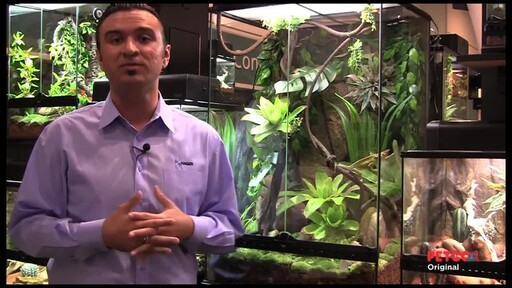 How-to Set Up a Rainforest Terrarium - image 6 from the video