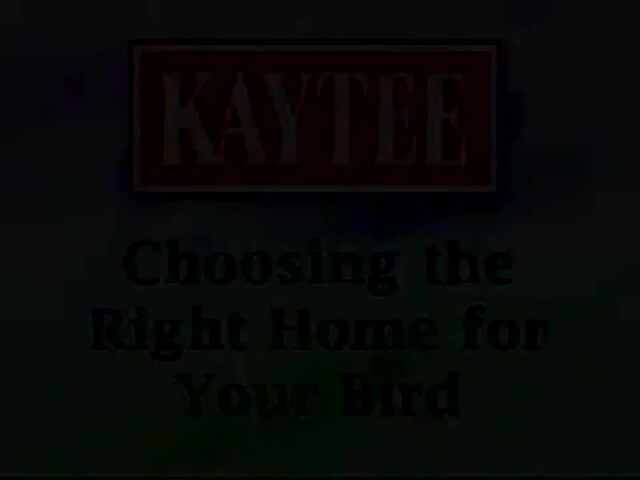Choosing the Right Home for Your Bird - image 1 from the video
