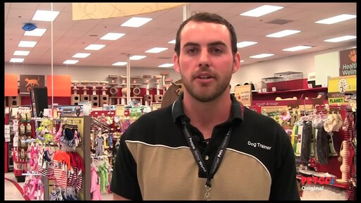 Meet a PETCO Dog Trainer - image 4 from the video