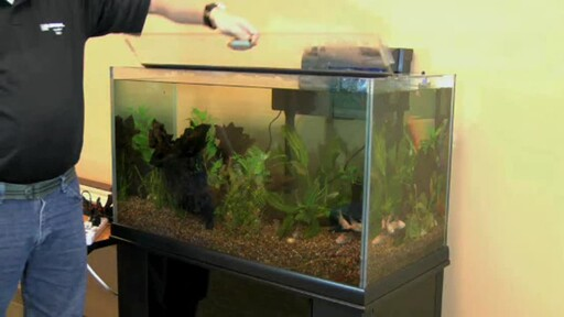 How-To Clean Your Aquarium with the  Aqueon Siphon Vacuum  - image 3 from the video