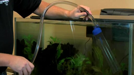 How-To Clean Your Aquarium with the  Aqueon Siphon Vacuum  - image 5 from the video