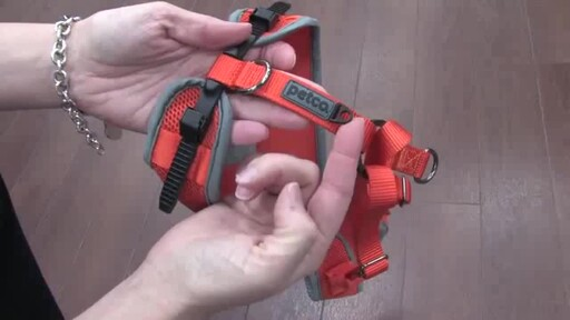 Petco Adjustable Mesh Harness for Dogs - image 7 from the video